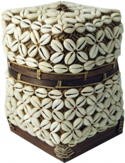 Exotic basket with lid